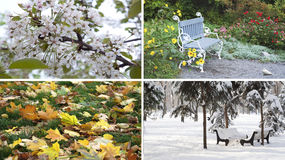 Φύση τεσσάρων εποχών Στοκ φωτογραφία με δικαίωμα ελεύθερης χρήσης
