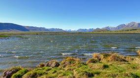 Φύση της Νέας Ζηλανδίας Στοκ εικόνα με δικαίωμα ελεύθερης χρήσης