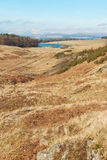 Φύση της Σκωτίας spirng Στοκ εικόνες με δικαίωμα ελεύθερης χρήσης