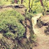 Φύση της τσεχικής περιοχής τουριστών εδάφους Macha ` s με την ανθίζοντας ερείκη στον τρόπο να κοιταχτεί επίμονα το χωριό Splavy σ Στοκ φωτογραφία με δικαίωμα ελεύθερης χρήσης