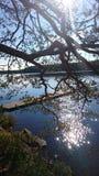 Φύση της Φινλανδίας στοκ εικόνες