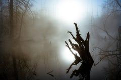 Φύση τοπίου Στοκ Εικόνες