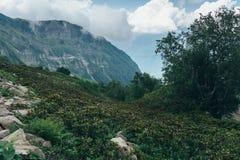 Φύση, τοπίο βουνών, γραφική άποψη με το νεφελώδη ουρανό στοκ εικόνες