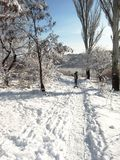 Φύση το χειμώνα, μετά από τις χιονοπτώσεις, ίχνος για Στοκ φωτογραφία με δικαίωμα ελεύθερης χρήσης