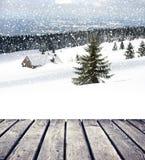 Φύση Χριστουγέννων Στοκ εικόνες με δικαίωμα ελεύθερης χρήσης