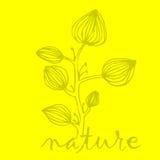 Φύση διανυσματική απεικόνιση