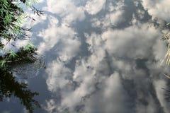 Φύση Στοκ εικόνες με δικαίωμα ελεύθερης χρήσης