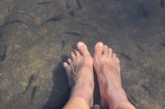 Φύση foot spa Στοκ εικόνα με δικαίωμα ελεύθερης χρήσης