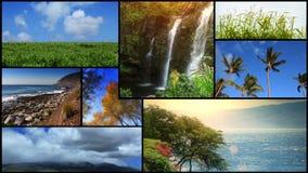 Φύση Scenics τηλεοπτικό Montage απόθεμα βίντεο