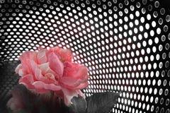 φύση technolygy Στοκ Φωτογραφία