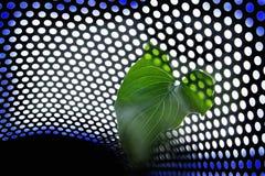 φύση technolygy Στοκ φωτογραφία με δικαίωμα ελεύθερης χρήσης