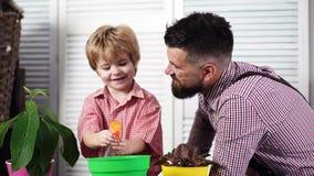 Φύτευση και προσοχή των εγκαταστάσεων Χαριτωμένο αγόρι παιδιών που βοηθά τον πατέρα του για να φροντίσει για τις εγκαταστάσεις Μπ απόθεμα βίντεο