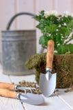 Φύτευση σπιτιών - μικρό φτυάρι που μένει στο δοχείο λουλουδιών Στοκ φωτογραφίες με δικαίωμα ελεύθερης χρήσης