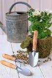 Φύτευση σπιτιών - μικρό φτυάρι που μένει στο δοχείο λουλουδιών Στοκ Φωτογραφίες