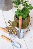 Φύτευση σπιτιών - μικρό φτυάρι που μένει στο δοχείο λουλουδιών Στοκ Εικόνες