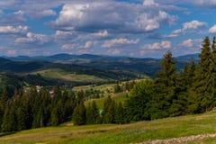 Φύτευση του έλατου στο πόδι του βουνού μια ηλιόλουστη ημέρα κοντά στο χωριό Στην απόσταση μπορείτε να δείτε τους ανελκυστήρες και στοκ φωτογραφίες
