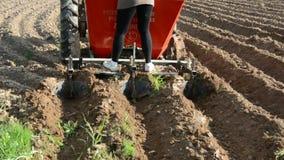 Φύτευση των πατατών στο αγρόκτημα απόθεμα βίντεο