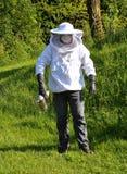 Φύλακας μελισσών Στοκ Εικόνες