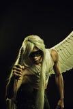 Φύλακας του ουρανού στοκ φωτογραφία με δικαίωμα ελεύθερης χρήσης