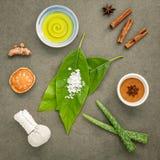 Φύλλα αβοκάντο με nature spa turmeric συστατικών, βοτανική COM Στοκ Φωτογραφία