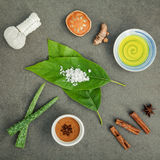 Φύλλα αβοκάντο με nature spa turmeric συστατικών, βοτανικό comp Στοκ φωτογραφία με δικαίωμα ελεύθερης χρήσης