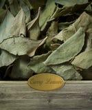Φύλλα κάρρυ επονομαζόμενα Στοκ Εικόνες