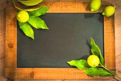 Φύλλα και εσπεριδοειδή λεμονιών Στοκ Εικόνα