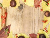 Φύλλα και κάστανα φθινοπώρου πλαισίων Στοκ φωτογραφία με δικαίωμα ελεύθερης χρήσης
