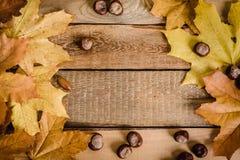 Φύλλα και κάστανα φθινοπώρου στον πίνακα Στοκ Φωτογραφίες