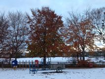 Φύλλα και χιόνι Στοκ εικόνα με δικαίωμα ελεύθερης χρήσης