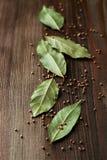 Φύλλα κόλπων και σπόροι μουστάρδας Στοκ Εικόνα