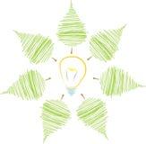 Φύλλα που περιβάλλουν το βολβό Στοκ εικόνες με δικαίωμα ελεύθερης χρήσης