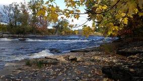 Φύλλα πτώσης και άσπρο νερό στοκ φωτογραφίες με δικαίωμα ελεύθερης χρήσης