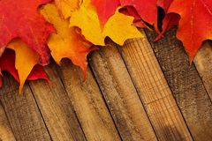 Φύλλα πτώσης φθινοπώρου στο ξύλινο υπόβαθρο Στοκ Φωτογραφία