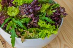 Φύλλα σαλάτας, πορφυρό μαρούλι, σπανάκι, arugula Μικτό φρέσκο sala Στοκ Φωτογραφίες