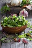 Φύλλα σαλάτας σε ένα ξύλινο κύπελλο Στοκ εικόνες με δικαίωμα ελεύθερης χρήσης