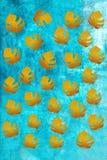 Φύλλα σε ένα μπλε υπόβαθρο grunge Στοκ εικόνες με δικαίωμα ελεύθερης χρήσης