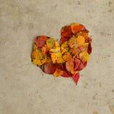 Φύλλα σε μια καρδιά στο σκυρόδεμα, υπόβαθρο Στοκ εικόνες με δικαίωμα ελεύθερης χρήσης