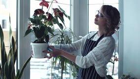 Φύλλα στιλβωτικής ουσίας γυναικών των λουλουδιών απόθεμα βίντεο