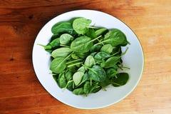 Φύλλα του σπανακιού Στοκ φωτογραφία με δικαίωμα ελεύθερης χρήσης