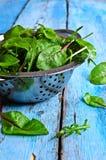 Φύλλα του arugula και chard Στοκ Εικόνες