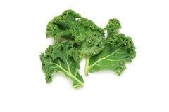 Φύλλα του Kale στο λευκό Στοκ Εικόνες