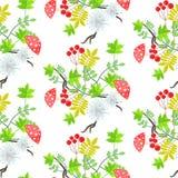 Φύλλα του Rowan και amanita άνευ ραφής σχέδιο μανιταριών Στοκ φωτογραφία με δικαίωμα ελεύθερης χρήσης