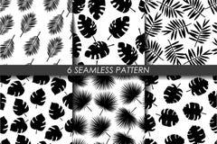 φύλλα τροπικά άνευ ραφής καθορισμένο δ&iota διάνυσμα Συλλογή του γραπτού σχεδίου επανάληψης 6 swatch μαύρο λευκό Hawa Στοκ Φωτογραφίες