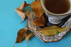 Φύλλα τσαγιού Στοκ Εικόνες
