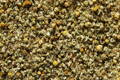 Φύλλα τσαγιού Chamomile Στοκ Εικόνα