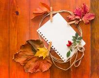 Φύλλα φθινοπώρου με τη Λευκή Βίβλο για το κείμενο Στοκ φωτογραφία με δικαίωμα ελεύθερης χρήσης