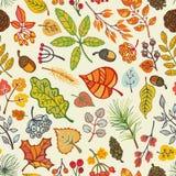Φύλλα φθινοπώρου, μούρα, κλάδοι πεύκων άνευ ραφής Στοκ Φωτογραφία
