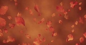 Φύλλα φθινοπώρου που αφορούν κάτω το καφετί υπόβαθρο απεικόνιση αποθεμάτων