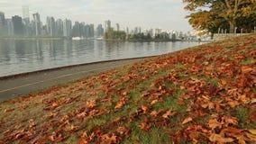 Φύλλα φθινοπώρου, δρομέας πάρκων του Stanley, Βανκούβερ φιλμ μικρού μήκους